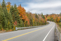 Winding Road Lined by Colorful Trees in Autumn Royalty Free Stock Photo
