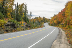 Winding Road Lined by Colorful Trees in Autumn Royalty Free Stock Photos