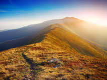 Winding road through meadows of mountain range at sunset Stock Photography