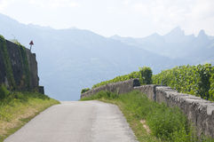 A winding road Royalty Free Stock Photo