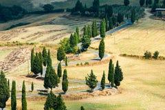 Winding road near Monticchiello and Pienza in Tuscany, Italy. Winding road in summer near Pienza in Tuscany, Italy stock photography