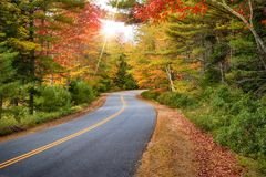 Winding road in New England fall foliage. Winding road curves through splendid autumn foliage in New England. Sun rays peeking through colorful trees Royalty Free Stock Images