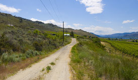 Winding road of Osoyoos Wine Valley Royalty Free Stock Photo