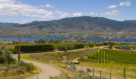 Winding road of Osoyoos Wine Valley Stock Images