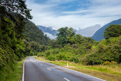 Winding road through rain forest in New Zealand Stock Image