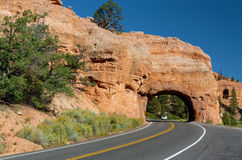 Winding Road at Red Canyon Royalty Free Stock Images