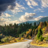 Winding road to forest in mountains. Autumn mountain landscape. asphalt road going to mountains passes through the ever green coniferous shaded forest Royalty Free Stock Photo