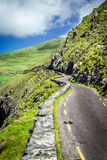 Winding Road to Slea Head, around Dingle Peninsula, Ireland. The beautiful, green, winding drive around Dingle Peninsula in Ireland Royalty Free Stock Photography