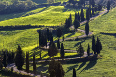 Winding road in Tuscany in Italy. On a sunny day stock photo