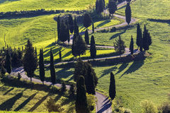 Winding road in Tuscany in Italy. View on beautiful Tuscany in Italy royalty free stock photography