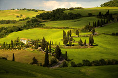 Winding road in Tuscany. Photo shows winding road in Tuscany. Beautifull fields of grass, strong rays of the sun, lots of cyprysses and village house royalty free stock image