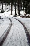 Winding Road in a Winter Forest Royalty Free Stock Photo