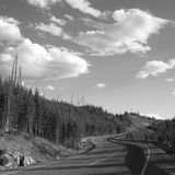 Winding road in Yellowstone Royalty Free Stock Photo