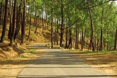 Winding roads of the himalayas, India Stock Photos