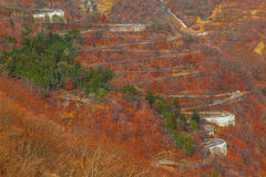 Winding Roads in the Mountains at Nikko National Park Stock Photo