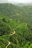 Winding roads  thorugh rice step farms of the hima Stock Photos