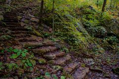 Winding Rock Steps in Forest Stock Image