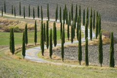 A winding rural road with cypresses along a plowed field. Tuscany, Italy. A winding rural road with cypresses along a plowed field. Tuscany. Italy Royalty Free Stock Photos