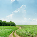 Winding rural road in green grass and light clouds Stock Photos
