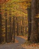 Winding single lane road at autumn Stock Photography