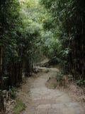 Winding stair during hike in Hong Kong royalty free stock image