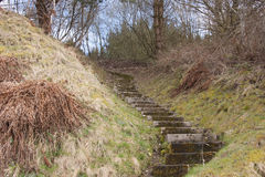 Winding steps in the country. Side Royalty Free Stock Photography