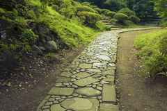 Nobody stone path Royalty Free Stock Image