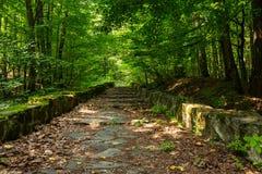 Winding stone steps with foliage horizontal Stock Photo