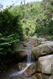 A WINDING STREAM. ASIA CHINA GUANGDONG SCENERY RIVULET Royalty Free Stock Photos