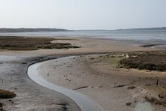 Winding Stream in muddy estuary low tide stock images