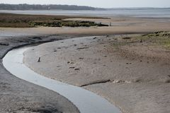 Winding Stream in muddy uk Estuary low tide royalty free stock photography