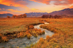Winding stream in rural Utah. Stock Images