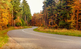 Winding tarred road through autumn trees. Low angle view along the center line of a deserted winding tarred road through colorful autumn trees Royalty Free Stock Photos