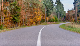 Winding tarred road through autumn trees. Low angle view along the center line of a deserted winding tarred road through colorful autumn trees Stock Photography