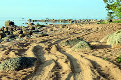 Winding track on the beach. Winding road on the beach Stock Image