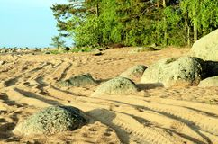 Winding track on the beach. Winding road on the beach Stock Photography