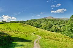 A winding track leading through a grassy meadow in the English lake District. royalty free stock photos