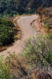 Winding Trail. From above - vertical Stock Photography