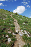 Winding trail to summit Stock Photography
