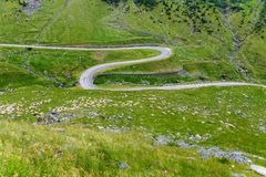 Winding Transfagarasan road. Famous motorcycle road - Transfagarasan, Carpathians, Romania stock image