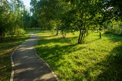 A winding walking path in the city park
