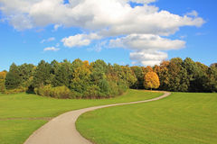 Winding walkway in autumnal park landscape Royalty Free Stock Photo