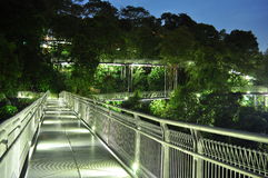 Winding walkway upwards in a forest. Breathtaking view of winding, elevated walkway upwards surrounded by lush greenery near Telok Blangah Hill Park, Singapore Stock Photos