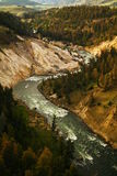 The winding Yellowston river. Royalty Free Stock Photo