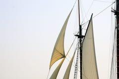 windjammer дней Стоковое Изображение RF