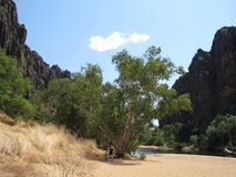 Windjana gorge, gibb river, kimberley, western australia Stock Photography