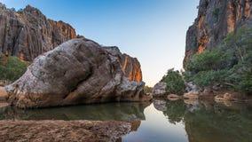 Windjana klyfta, konung Leopold Ranges, Kimberley Västra Australi Arkivfoto