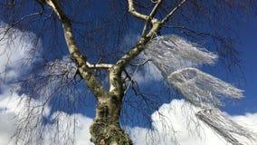 Windklokkengelui op een naakte die boom in langzame motie wordt geblazen stock footage