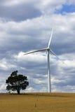 Windkraftanlage auf Bauernhof in zentraler Victoria, Australien Lizenzfreie Stockfotos