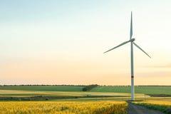 Windkraftanlage und schöne Felder bei Sonnenuntergang lizenzfreies stockbild